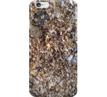 Coins in Sand  iPhone Case/Skin