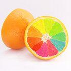 Tutti Frutti Orange by Barb Leopold