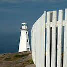 Working lighthouse at Cape Spear by DebYoung