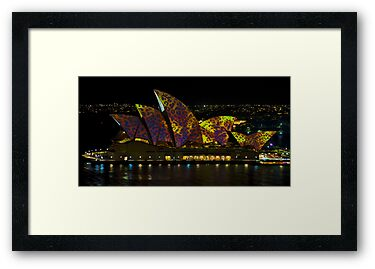 The Leopard - Sydney Opera House - Australia by Bryan Freeman