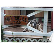 I Stay At The Pud Muddle Lodge -10 Poster