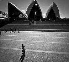 sydney opera house iii by doug riley