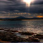 sunset forster by gutto