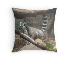 En Guarde - Lemur at ther Zoo Throw Pillow