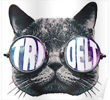 Tri Delt Cat Eye Galaxy Poster