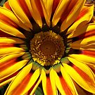 Yellow flower fantasy by Chanzz