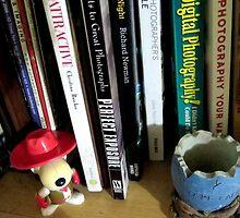 the bookshelf - photography corner by lensbaby