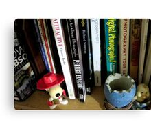 the bookshelf - photography corner Canvas Print