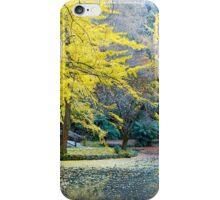 Autumn, Alfred Nicholas Memorial Gardens, Victoria, Australia. iPhone Case/Skin