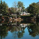 Lakehouse (color) by Stephen  Van Tuyl