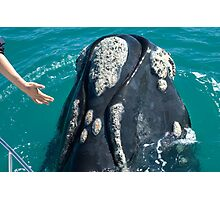 Incredible Close Encounter Photographic Print