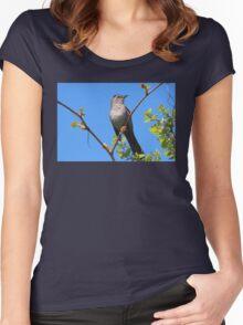 Gray Catbird Women's Fitted Scoop T-Shirt