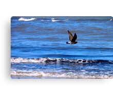 Flying Proud Canvas Print
