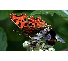 B With A Comma Photographic Print