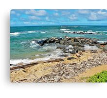 Driftwood on Lydgate Beach Canvas Print