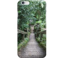 The Grand 47-Step Staircase iPhone Case/Skin