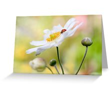 Anemone lady Greeting Card