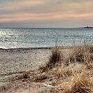 Dusk on Cape Cod by Monica M. Scanlan