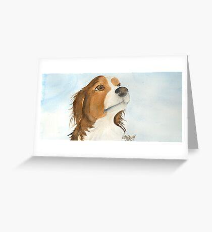 Vester, Australian Shepherd Greeting Card