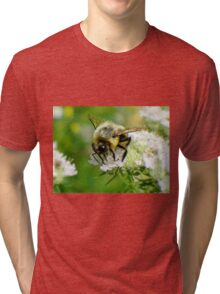 Bumble bee on white flower Tri-blend T-Shirt