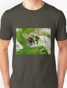 Bumble bee on white flower T-Shirt