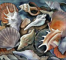 Box of Shells by Karin Zeller