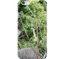 SURVIVAL - THE WATERBUCK - Kobus ellipsiprymnus - WATERBOK iPhone Case/Skin