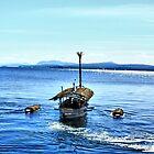 Ride On Lake Memphremagog by Deborah  Benoit