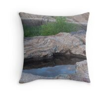 Reflective pool Throw Pillow
