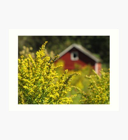 Little Red Shed on the Prairie Art Print