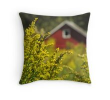 Little Red Shed on the Prairie Throw Pillow