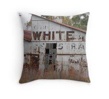 Old Florida Citrus Throw Pillow