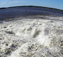power of water - fisheye view by Cheryl Dunning