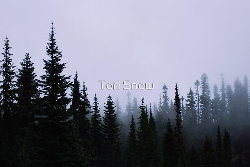 Approaching Fog by Tori Snow