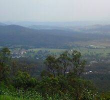 TAMBORINE VIEW by Bree Lucas