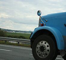 Keep on Truckin by Lynn  Gibbons
