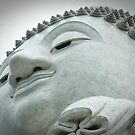 The Big Buddah by sarsie
