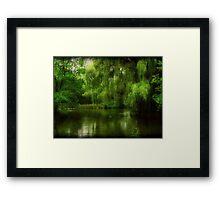 Around the Aviary ©  Framed Print