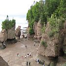 Hopewell Rocks by hummingbirds