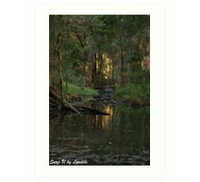 Sunset behind the Trees - Queensland Art Print