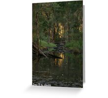 Sunset behind the Trees - Queensland Greeting Card