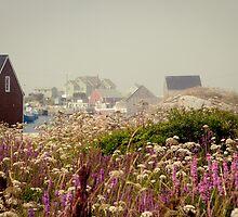 PURPLE HAZE- Peggy's Cove, Nova Scotia by Andrianne