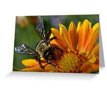 Wings of Truth Greeting Card