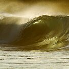 Golden Perfection by Vince Gaeta