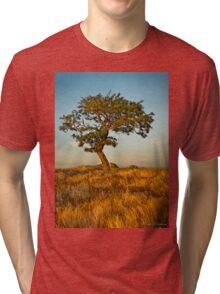 DogRocks ~ Geelong Vic Tri-blend T-Shirt