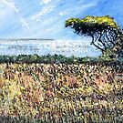 Cornish Hedge and Tree, at Kemyel Crease by Sue Nichol