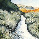 Bleaklow Stream by Sue Nichol