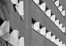 Fins in mono by Robert Dettman