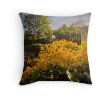 When Last We Saw the Sun Throw Pillow