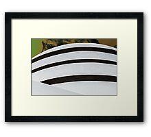 Guggenheim on Steroids Framed Print
